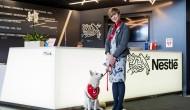Pets@work – czyli jak się pracuje zpsem wbiurze