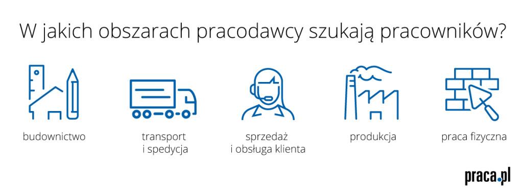 Pracodawcy szukają_infografika